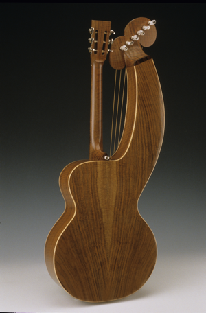 Harp Guitar / Claro Walnut Back & Sides